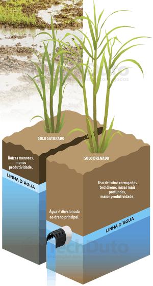 Esquema do benefício da drenagem agrícola